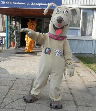 Kostiumy reklamowe w 2021 roku. Czy i co można teraz zaplanować? Pies