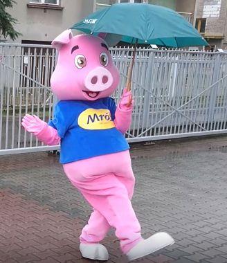 Elabika stroje reklamowe dla działalności zintegrowanej, czyli Świnia Mróz