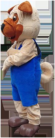 Elabika strój maskotki na zamówienie Pies Mops MOPS Mława